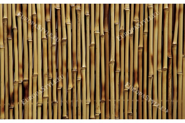 Фототапет бамбукова структура 2