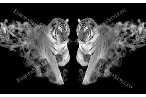 Фототапети двойка тигри с пламъци в 2 цвята