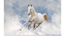Фототапет бял кон галоп на фон небе сини облаци