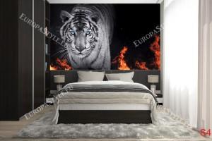 Фототапет черен тигър с пламъци
