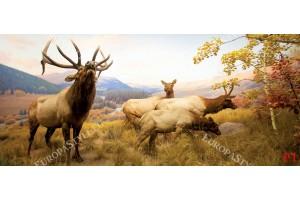Фототапети планински пейзаж с елен и сърни