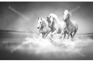 Фототапет тройка сиви коне в галоп
