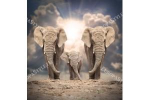 Фототапети изглед на три красиви слона