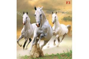 Фототапет тройка бели коне в галоп модел 2