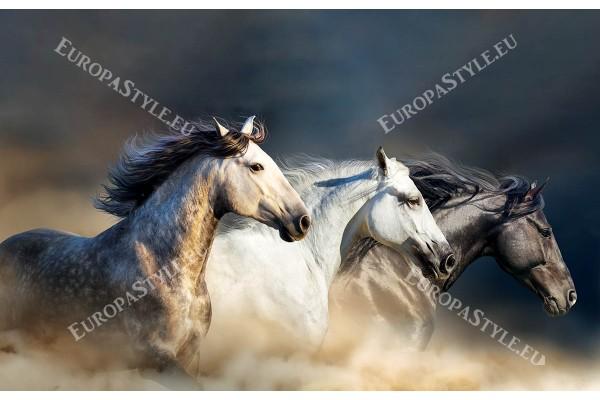 Фототапет профил на тройка разноцветни коне