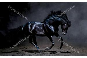 Фототапет красив черен кон