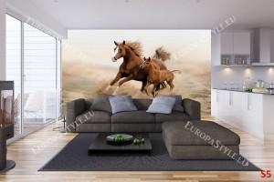 Фототапет кафяв кон с малко конче