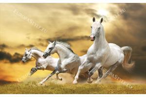 Фототапет тройка красиви коне на жълт фон