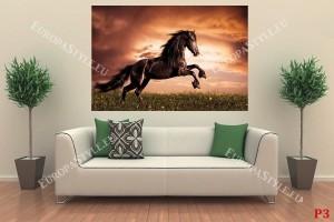 Фототапет елегантен тъмен кон на поляна