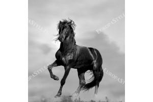 Фототапет черен кон на сив фон