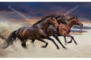 Фототапет тройка коне в галоп