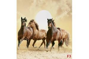 Фототапети кафяви коне на фон залез в 2 цвята