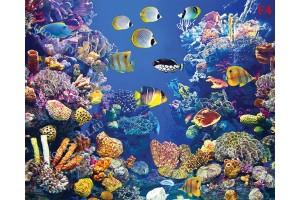 морско дъно с много рибки и корали