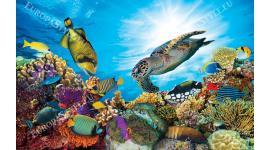 морско дъно с много рибки и голяма костенурка