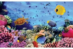 Фототапет морско дъно с много рибки 3д ефект