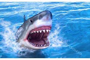 Фототапет голяма морска акула