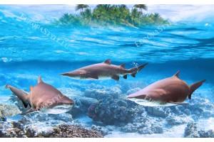 Фототапет тройка акули и изглед малък остров