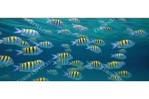 Фототапети морско дъно с много жълти рибки
