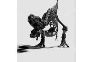 Фототапети черен скелет на динозавър