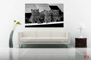 Фототапети малки котенца върху черни пиано