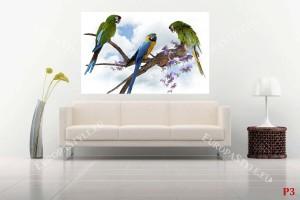 Фототапет тройка папагали ара