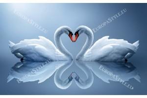 Фототапет двойка лебеди огледален образ в 2 цвята