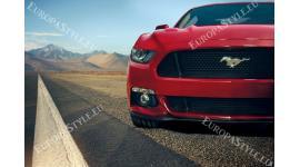 Фототапети червен автомобил в пустинята