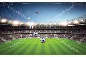 Фототапети панорамен стадион с ясно небе и топки