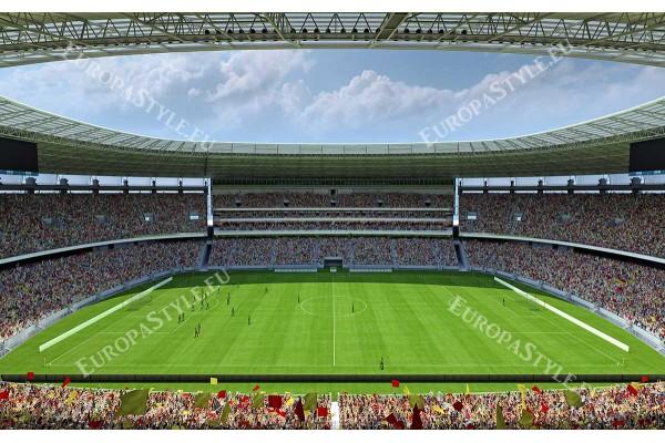 Фототапети голям слънчев стадион с развети знамена