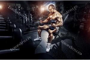 Фототапет фитнес мания