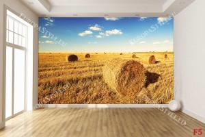Фототапети слънчево поле с бали