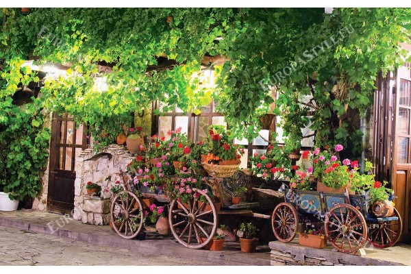 Фототапет изглед търново старият град каручки с цветя