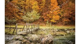 Фототапет български есенен пейзаж с гора и мостче край Русе