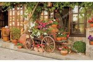Фототапет красив български изглед от Велико Търново