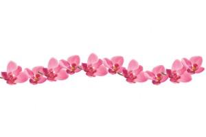 Фотопринт за кухня гирлянд от розови орхидеи