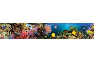 Фотопринт за кухня морско дъно аквариум