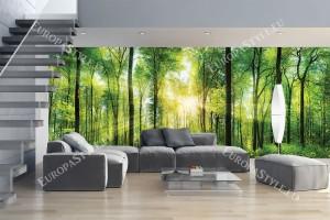 Фототапети макси модел зелена слънчева гора