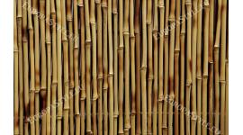 Фототапет размер 330 см-210 см - Бамбук кафяв